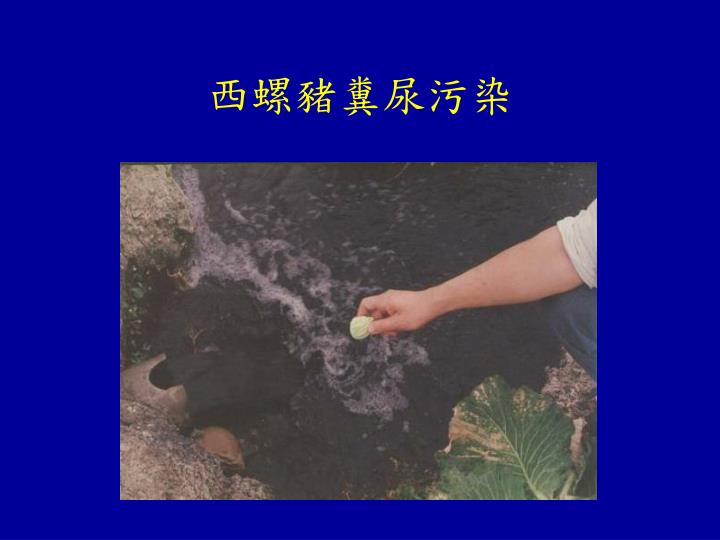 西螺豬糞尿污染