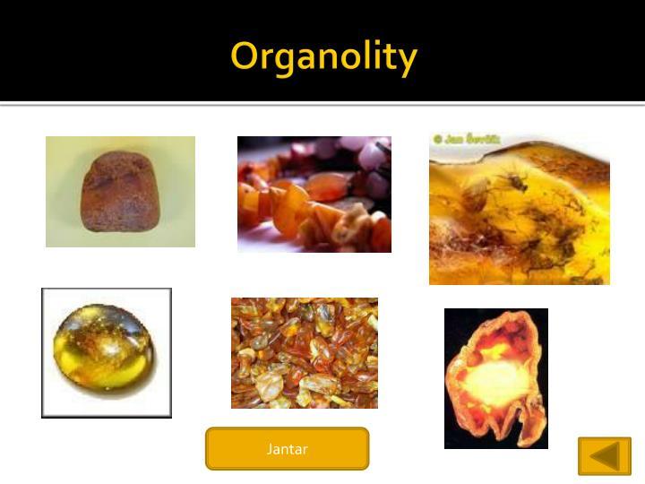 Organolity