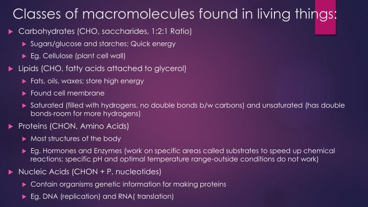 Classes of macromolecules found in living things: