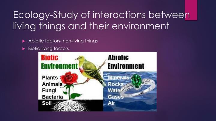 Ecology-Study
