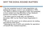 why the doha round matters