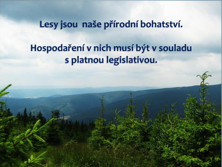 Lesy jsou  naše přírodní bohatství.