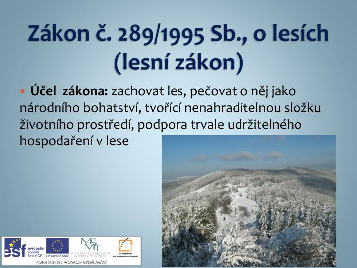 Z kon 289 1995 sb o les ch lesn z kon