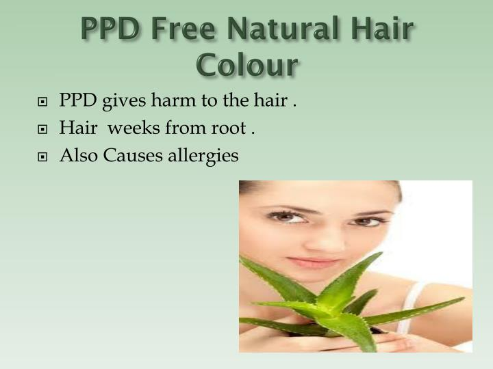 PPD Free Natural Hair Colour