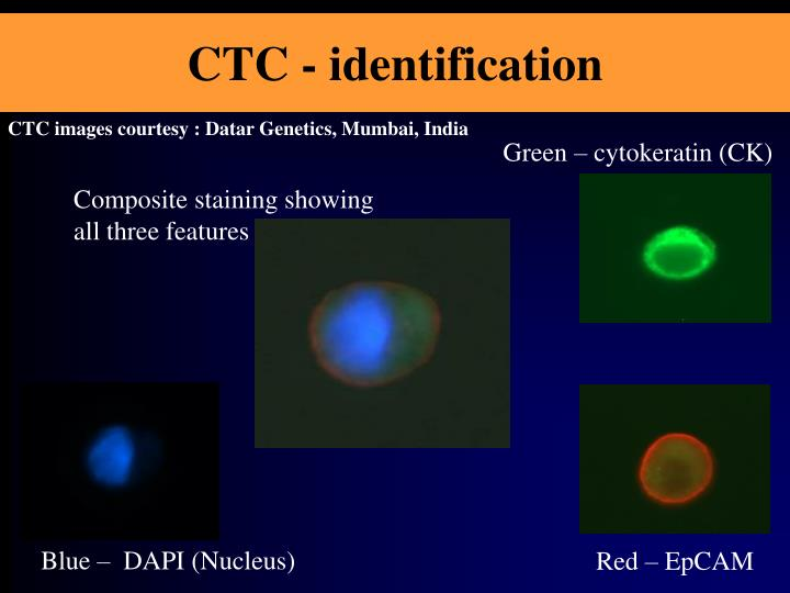 CTC - identification