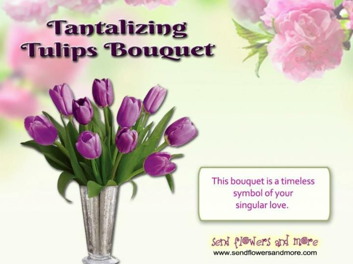Convey your message with beautiful tulips flowers
