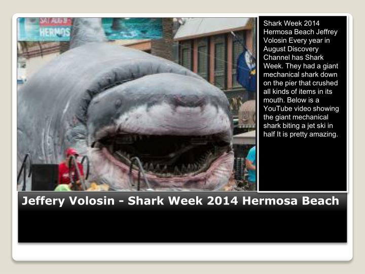 Jeffery volosin shark week 2014 hermosa beach