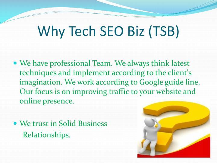 Why Tech SEO Biz (TSB)