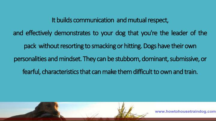 It builds communication  and mutual respect,