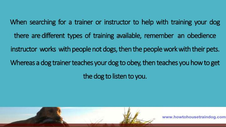 When  searching  for  a  trainer  or  instructor  to  help  with  training  your  dog  there  are
