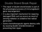 double strand break repair