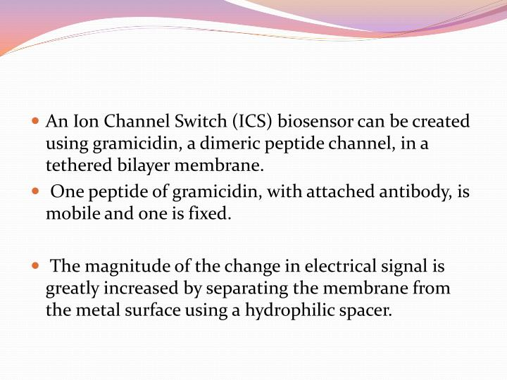 An Ion Channel Switch (ICS) biosensor can be created using gramicidin, a