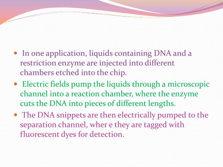 In one application, liquids containing DNA and a restriction enzyme are injected into different chambers etched into the chip.
