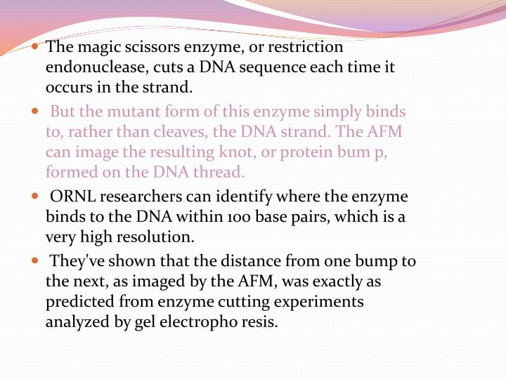 The magic scissors enzyme, or restriction